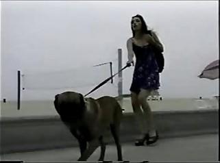 Sabrina Johnson & Nikki Brantz - Gangbang Girl 18