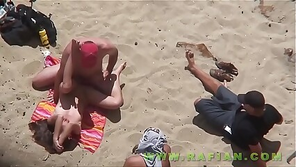 Beach Safaris 11HD