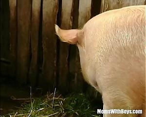 Brunette Lady Farmer Hairy Pussy Barn Fucked