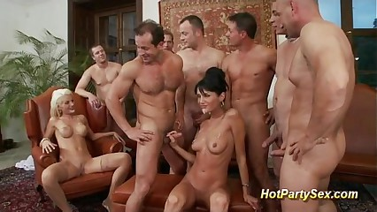 cute girls in business party orgy