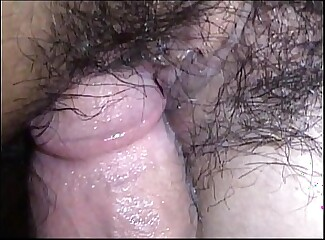 602 HAYES insemination